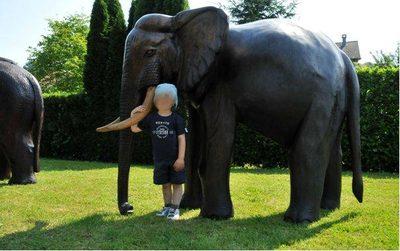 """Image du produit: """"Eléphant"""" Statue originale en bois"""