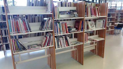 Image du produit: Bibliotheque, etagères recto-verso (Loisirs créatifs)